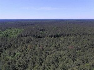 SOLD!!  5 Acres of Residential Land For Sale in Dinwiddie County VA!