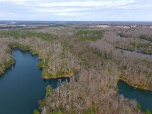 SOLD!!  49 Acres Overlooking Little Creek Reservoir in James City Co VA!
