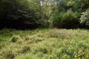 UNDER CONTRACT!!  7.5 Acres of Residential and Hunting Land For Sale in Amherst County VA!