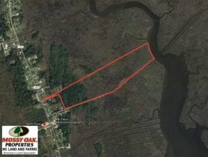 REDUCED!  41 Acres of River Front Hunting Land For Sale in Carteret County NC!