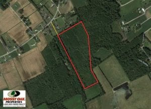 20.23 Acres of Hunting and Residential Land For Sale in Robeson County NC!