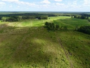 80 Acres of Farm and Hunting Land for Sale in Gates County NC!