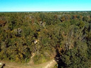 .47 Acres of Waterfront and Residential Land For Sale in Pender County NC!