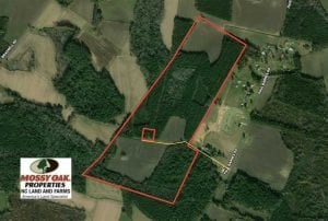 REDUCED!  97 Acres of Farm and Timber Land For Sale in Columbus County NC!