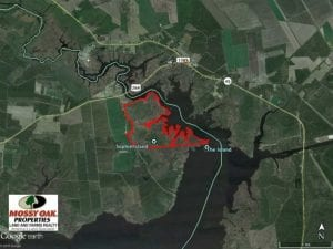 547 Acres of Waterfront Hunting Land For Sale in Beaufort County NC!