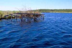 UNDER CONTRACT!!  547 Acres of Waterfront Hunting Land For Sale in Beaufort County NC!