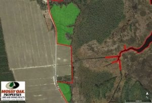 SOLD!!  547 Acres of Waterfront Hunting Land For Sale in Beaufort County NC!