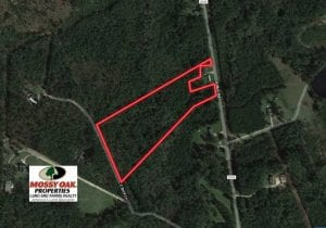 SOLD!!  10.6 Acres of Wooded Residential Land For Sale in Harnett County NC!