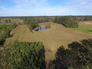 UNDER CONTRACT!!  32.85 Ac of Residential and Recreational Land For Sale in Columbus County NC!