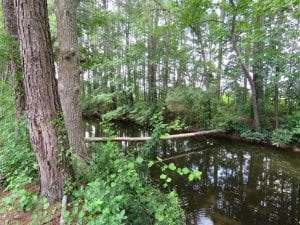 UNDER CONTRACT!!  5.22 Acres of Residential and Recreational Land For Sale in Robeson County NC!