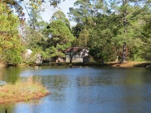 UNDER CONTRACT!!  5.7 acres of Residential Land for Sale in Columbus County NC!