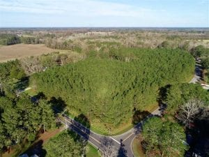 22.72 Acres of Recreational Timberland For Sale in Washington County NC!