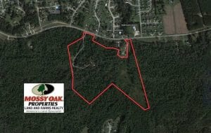 50 Acres of Recreational and Hunting Land for Sale in Cumberland County NC!