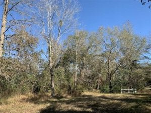 UNDER CONTRACT!!  50 Acres of Recreational and Hunting Land for Sale in Cumberland County NC!
