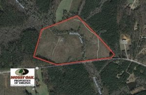 SOLD!!  66 Acres of Hunting Land for Sale in Dinwiddie County VA!