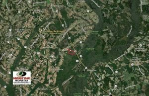 SOLD!!  125 Acres of Duck Hunting Land and Cabin Site For Sale in Robeson County NC!