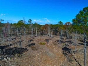UNDER CONTRACT!!  23.23 Acres of Residential Land For Sale in Lee County NC!