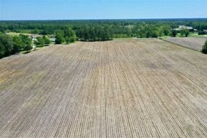 UNDER CONTRACT!!  50 Acres of Farm Land for Sale in Columbus County NC!