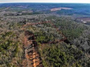 7.94 acres of Hunting and Residential Land for Sale in Brunswick County VA!