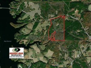 UNDER CONTRACT!!  85.62 +/- Acres of Hunting and Farm Land For Sale in Person County NC!