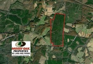 UNDER CONTRACT!!  137.93 Acres of Investment Timber Land for Sale in Person County  NC!