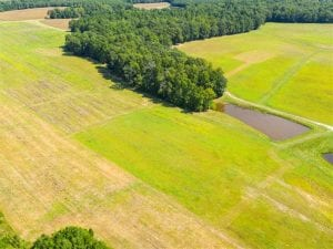 SOLD!!  10.03 Acre Homesite with Pond for Sale in Alamance County NC!