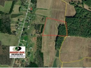 12.35 +/- Acres of Residential Land with Homesite For Sale in Alamance County NC!
