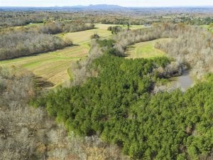 41.32 Acres of Farm and Hunting Land for Sale in Rockingham County NC!