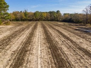 53.33 acres of Farm for Sale in Sampson County NC!