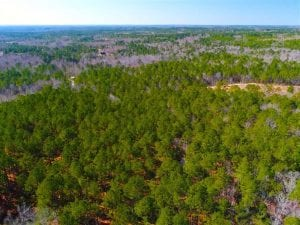 UNDER CONTRACT!!  10.02 Acres of Residential Land For Sale in Lee County NC!