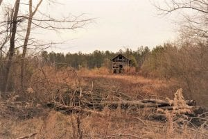 22 + / – acres of Residential/Timberland For Sale in Chatham County NC!