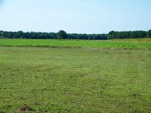 0.41 Acre Residential Lot For Sale in Southampton County VA!