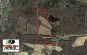 11.75 Acres of Timber and Recreational Land For Sale in Orange County NC!