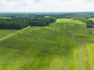 SOLD!!  13.29 +/- Acres of Residential Land with Homesite For Sale in Alamance County NC!