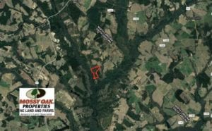 SOLD!!  64 Acres of Timber and Hunting Land For Sale in Dillon County SC!
