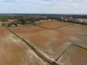 73.35 Acres of Farm and Timber Land For Sale in Craven County NC!