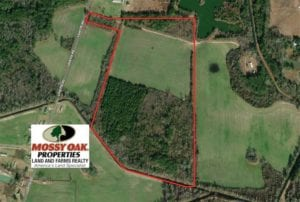 SOLD!!  55 Acres of Farm and Timber Land For Sale in Robeson County NC!