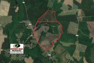 SOLD!!  297 Acres of Timber and Hunting Land For Sale in Gates County NC and Suffolk VA!