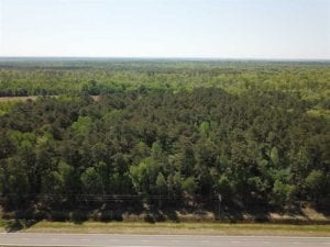 REDUCED! 83 Acres of Commercial Farm and Timber Land For Sale in Tyrrell County NC!