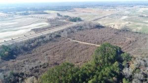 93 Acres of Commercial Development and Hunting Land For Sale in Pitt County NC!