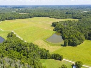 12.16 Acre Homesite with Pond For Sale in Alamance County NC!