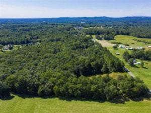 37.72 Acres of Farm and Hunting Land for Sale in Stokes County NC!