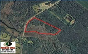 REDUCED! 17.82 Acres of Hunting Land for Sale in Pamlico County NC!