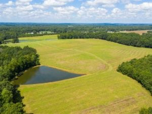 10.01 Acre Homesite with Pond for Sale in Alamance County NC!