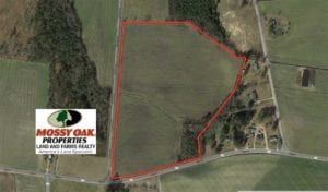 27 acres of Farm Land for Sale in Robeson County NC!