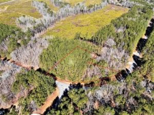 0.95 Acre Residential Lot for sale in Northampton County NC!