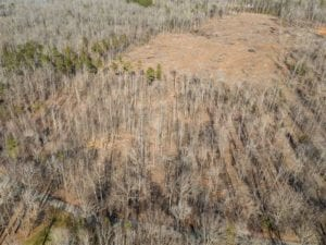 +/- 24.68 acre Lakeview Homesite for Sale in Person County, NC!