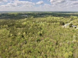 REDUCED! 27.11 Acres of Timber and Hunting Land For Sale in Nash County NC!