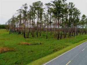16.77 Acres of Waterfront Residential Land For Sale in Hyde County, NC!