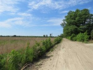 REDUCED!! 9.25 Acres of Residential and Farm Land For Sale in Robeson County NC!